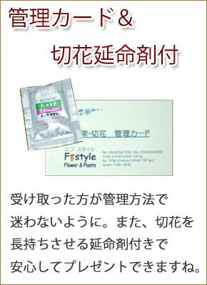 setumei4-new.jpg