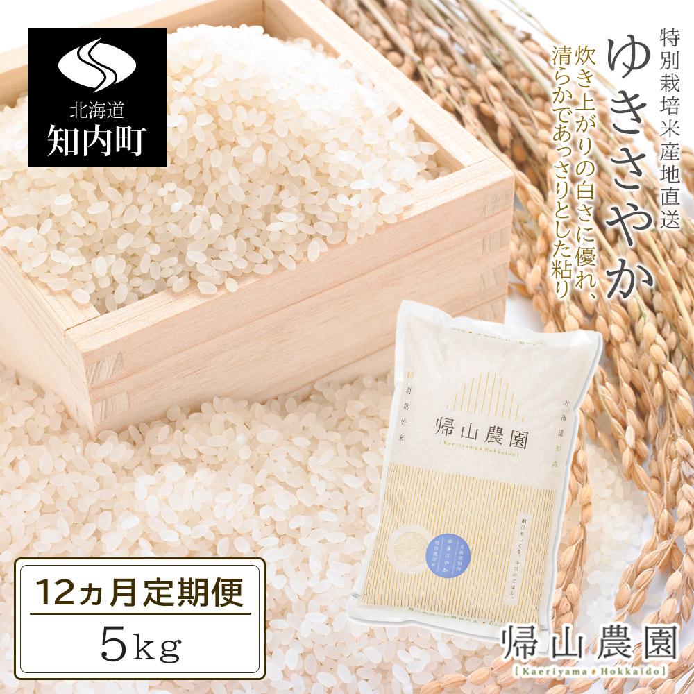 北海道知内町 【ふるさと納税】☆12カ月定期便☆「ゆきさやか 5kg」特別栽培米産地直送...