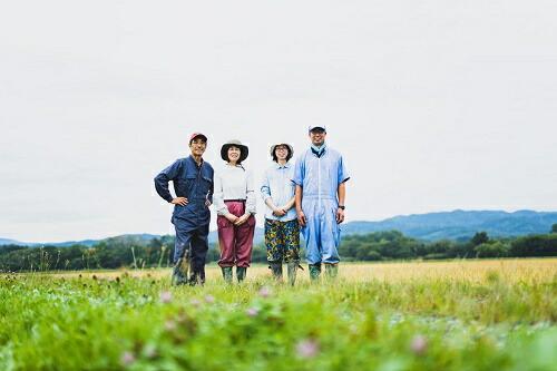 北海道由仁町 【ふるさと納税】賀集農産 無洗米ゆめぴりか3kg 6か月