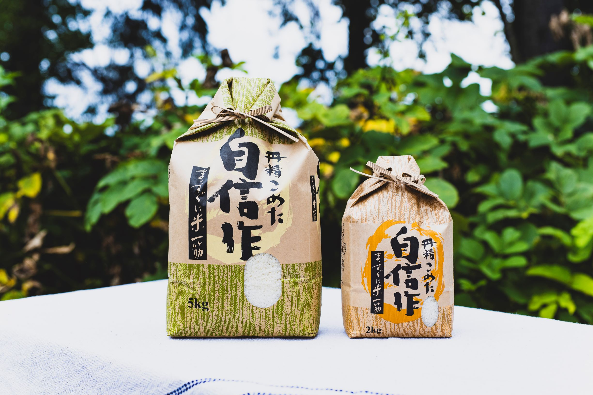 北海道由仁町 【ふるさと納税】賀集農産 無洗米ゆめぴりか10kg
