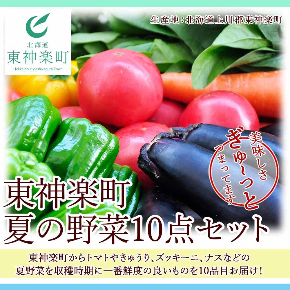 北海道東神楽町 【ふるさと納税】東神楽町夏の野菜10点セット 【N010】