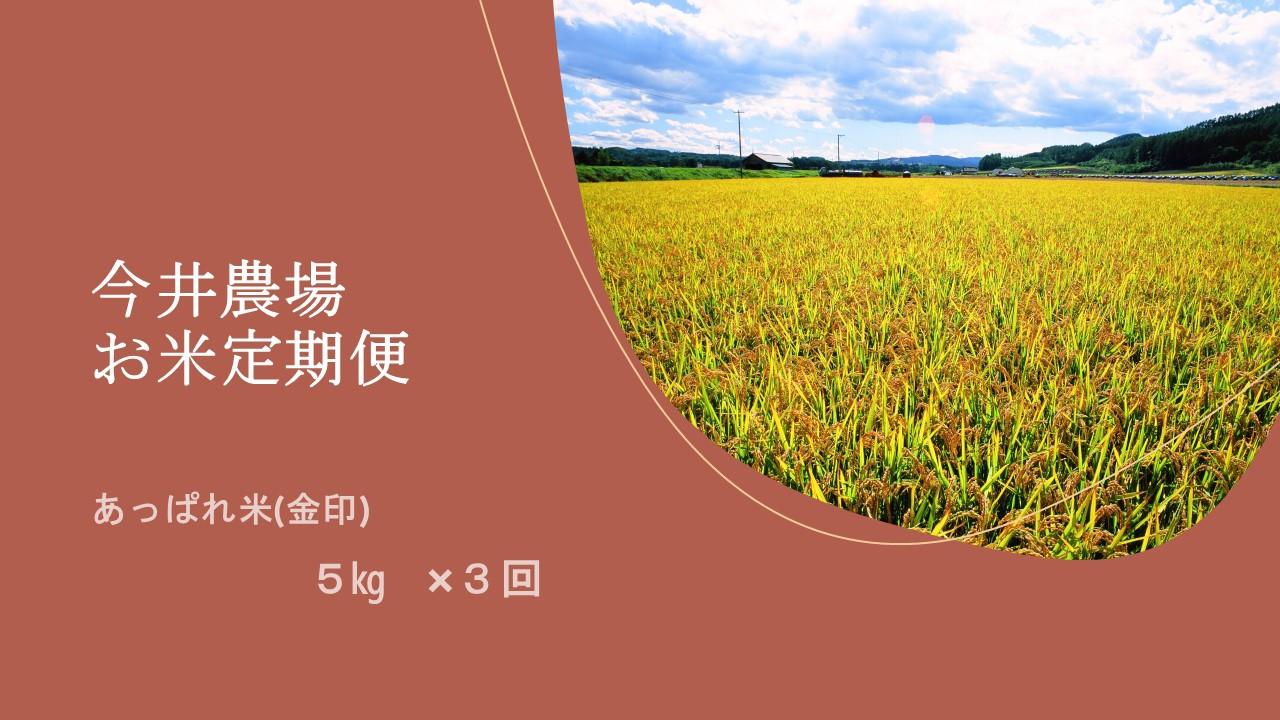北海道津別町 【ふるさと納税】【定期便】今井農場 あっぱれ米(金印)5kg×3回(3ヵ月連続)