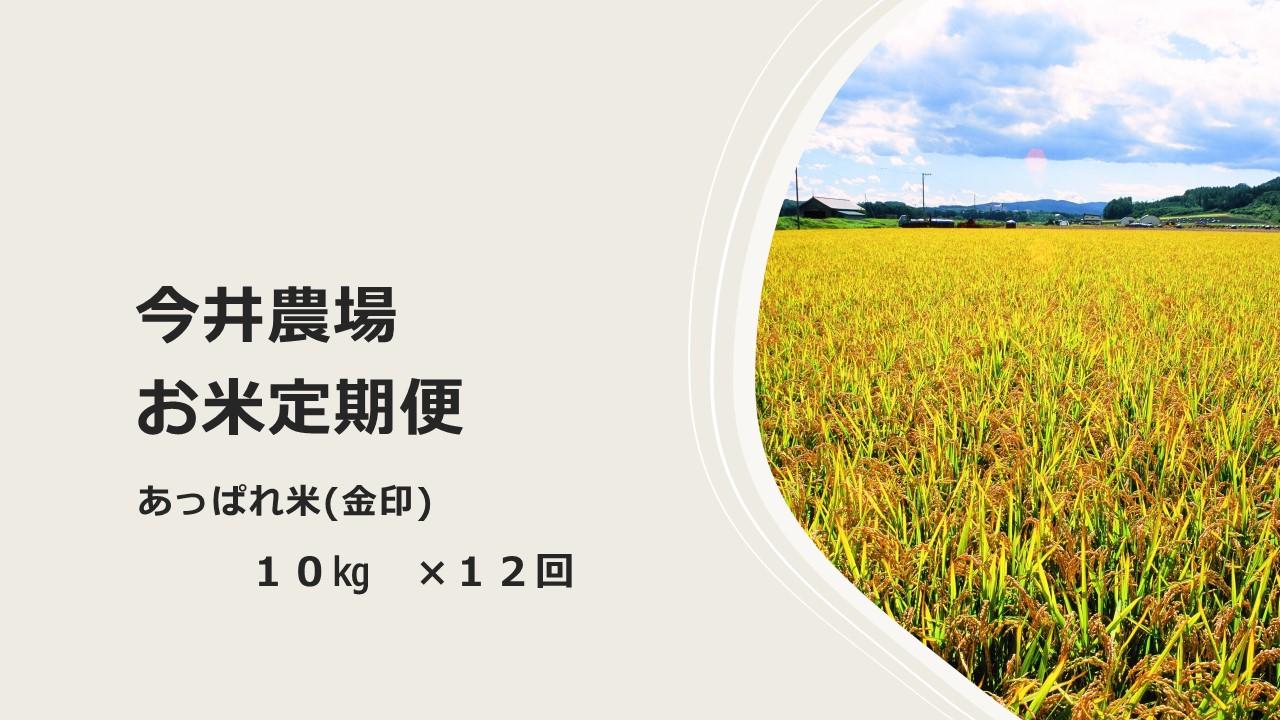 北海道津別町 【ふるさと納税】【定期便】今井農場 あっぱれ米(金印)10kg×12回(毎月)