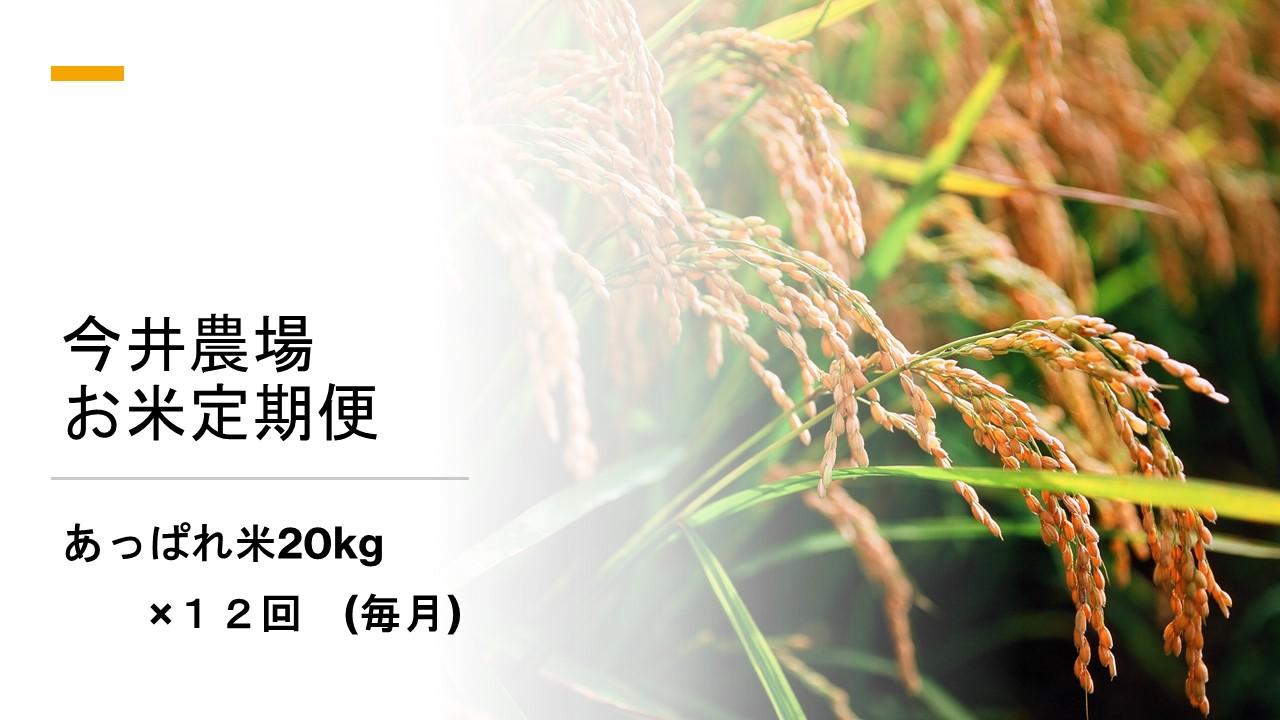 北海道津別町 【ふるさと納税】【定期便】今井農場 あっぱれ米20kg×12回(毎月)