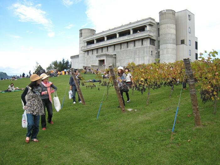 町民に愛され共に歩んできた全国初の自治体経営ワイナリーである十勝ワインの「池田ワイン城」を、町民も集える場所として整備したい!