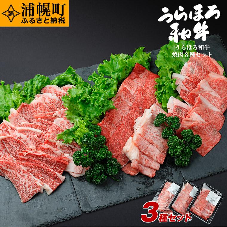 北海道浦幌町 【ふるさと納税】うらほろ和牛 焼肉3種セット