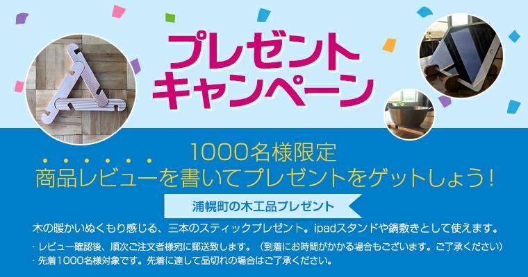 プレゼントキャンペーン 1000名様限定 商品レビューを書いてプレゼントをゲットしよう!