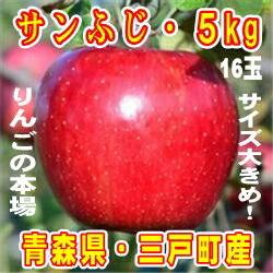 青森県三戸町 【ふるさと納税】りんご「サンふじ」サイズ大きめ!16玉・約5kg