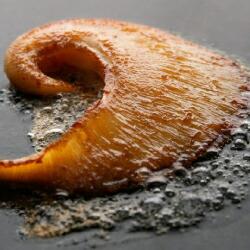 ふかひれの中でも肉厚な吉切鮫の尾びれのステーキ 3箱セット