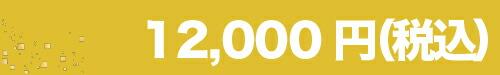 """12000"""