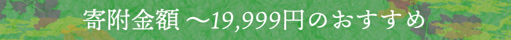寄附金額〜19999円までのおすすめ