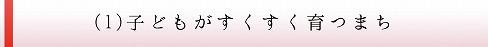 使い道(1)