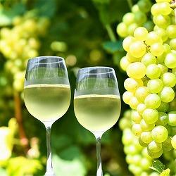 【ぶどう農家救済】寒河江ワイン(シャルドネ)720ml×12本 白/辛口