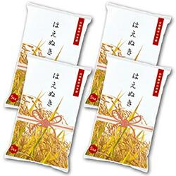 米 はえぬき 20kg 5kg×4 精米 令和2年産