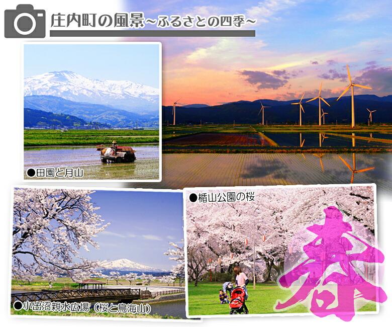 庄内町の風景=春