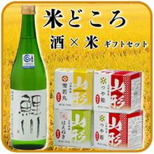 米どころ 酒×米ギフトセット