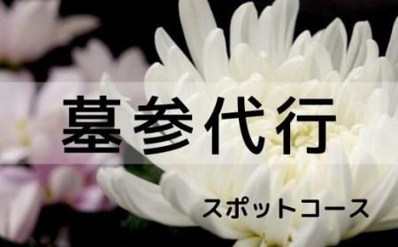 福島県福島市 【ふるさと納税】No.0723 花の店サトウ 墓参代行サービス スポットコース
