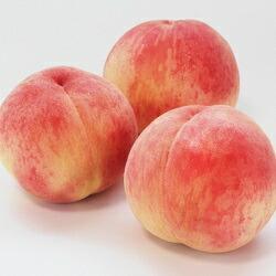 【先行予約】ふくしまの桃 3kg 品種お任せ