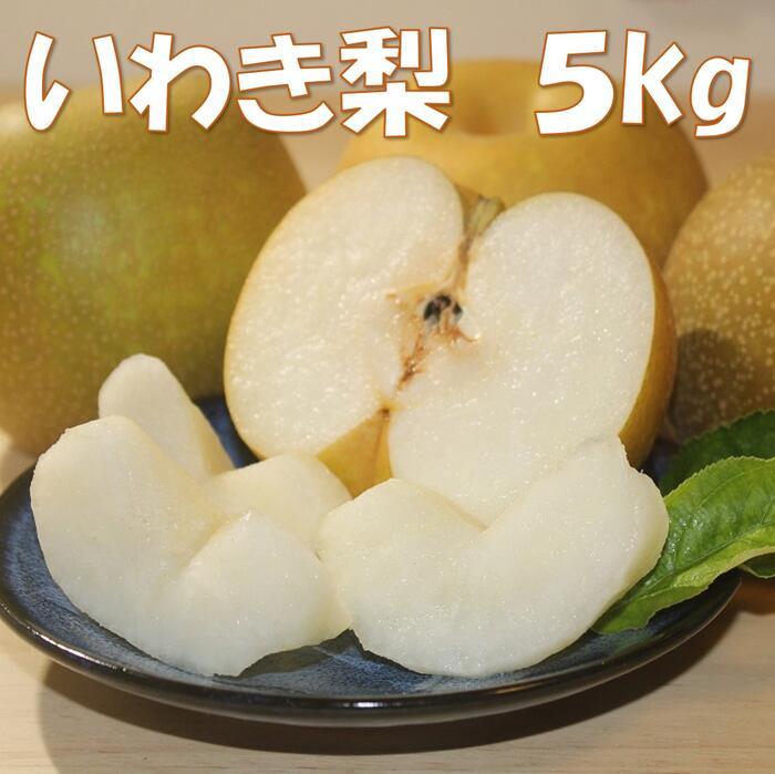福島県いわき市 【ふるさと納税】サンシャインいわき梨 5kg