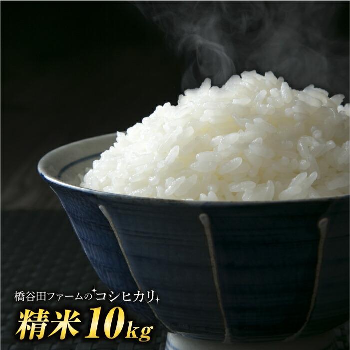 令和2年産新米 コシヒカリ 10kg (精米)