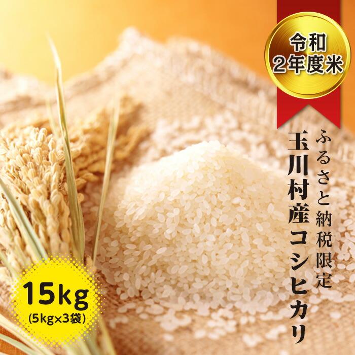 ふるさと納税限定!玉川村産 コシヒカリ 5kg×3回