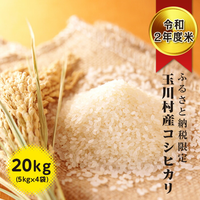 《令和二年度米》 ふるさと納税限定!玉川村産 コシヒカリ 20kg(5kg×4袋)