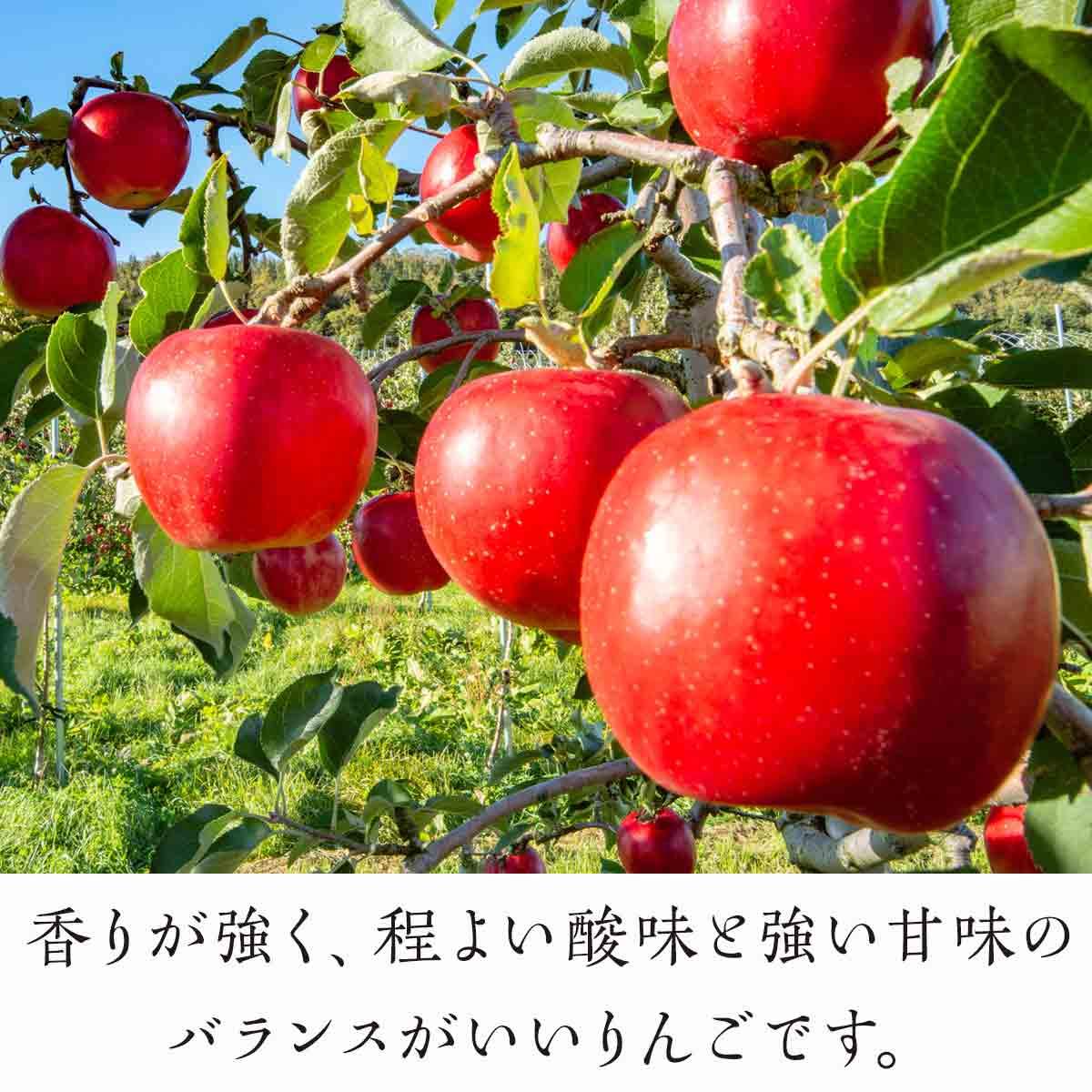【玉川村】 契約栽培 りんご 特大サイズ 約11~13玉 (5kg相当)