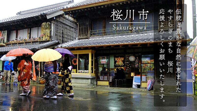 茨城県桜川市 ふるさと納税