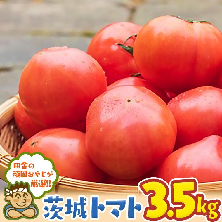 茨城県つくばみらい市 【ふるさと納税】田舎の頑固おやじが厳選!茨城のトマト3.5kgセット