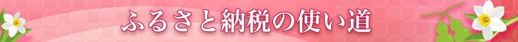 タイトルバナー自治体紹介