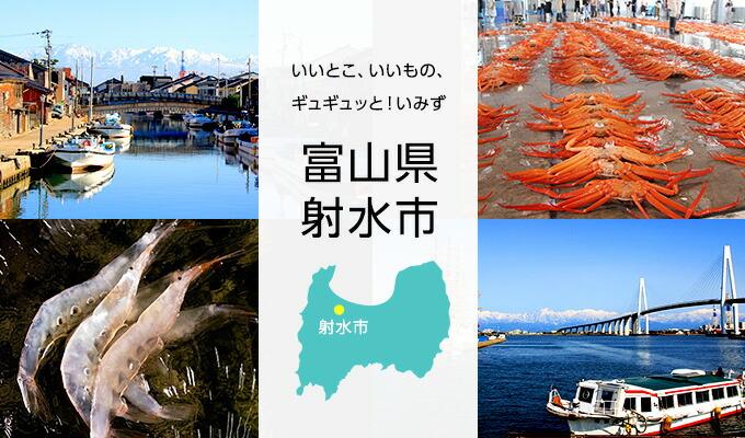 【楽天市場】【ふるさと納税】富山県 射水市 いいもの、いい ...