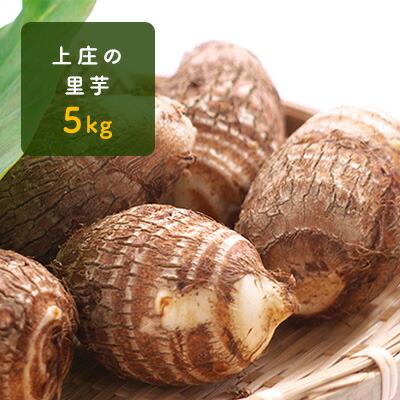 ふるさと納税 上庄の里芋5kg 日本一の味をめざす特別栽培里芋