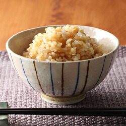発芽玄米 無農薬コシヒカリ特選 真空パック 3kg