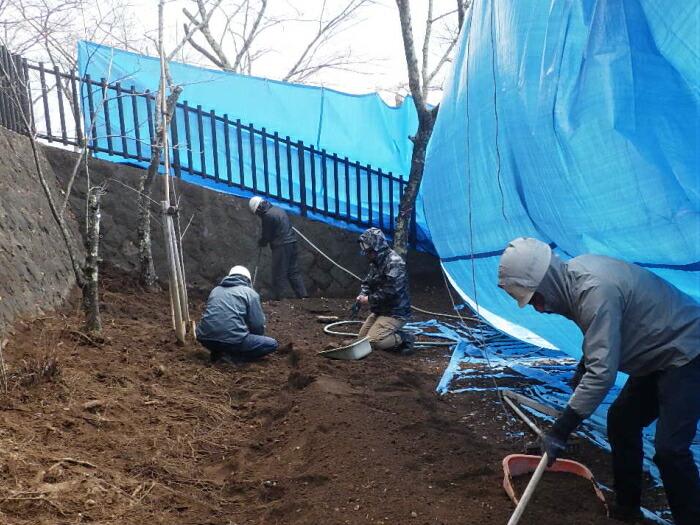 土壌改良による樹勢回復作業