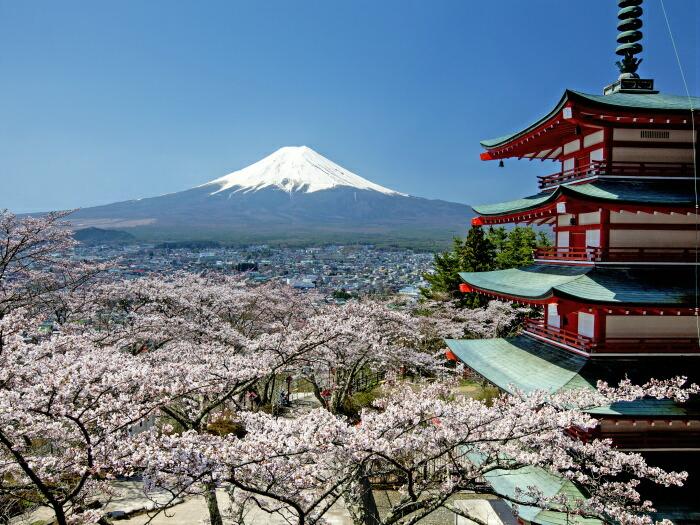 新倉山浅間公園から富士山を望む「忠霊塔と桜と富士山」