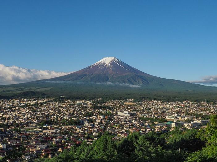 富士山を食害から守れ!有害鳥獣を「マイナス」から「プラス」の存在に変え、ジビエによる新たな経済活動を生み出したい!