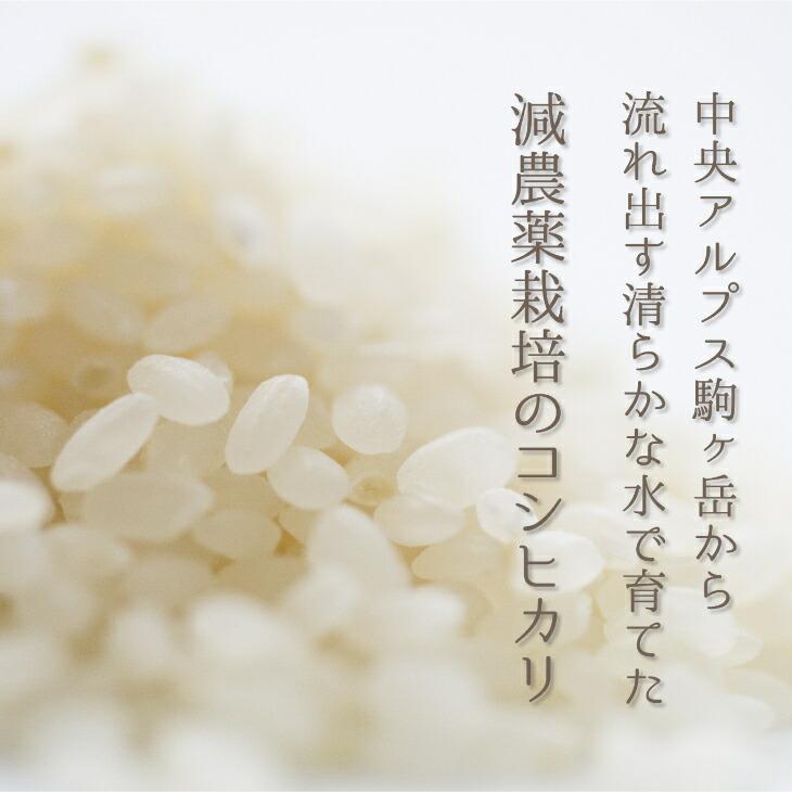 長野県宮田村 【ふるさと納税】減農薬栽培コシヒカリ30kg