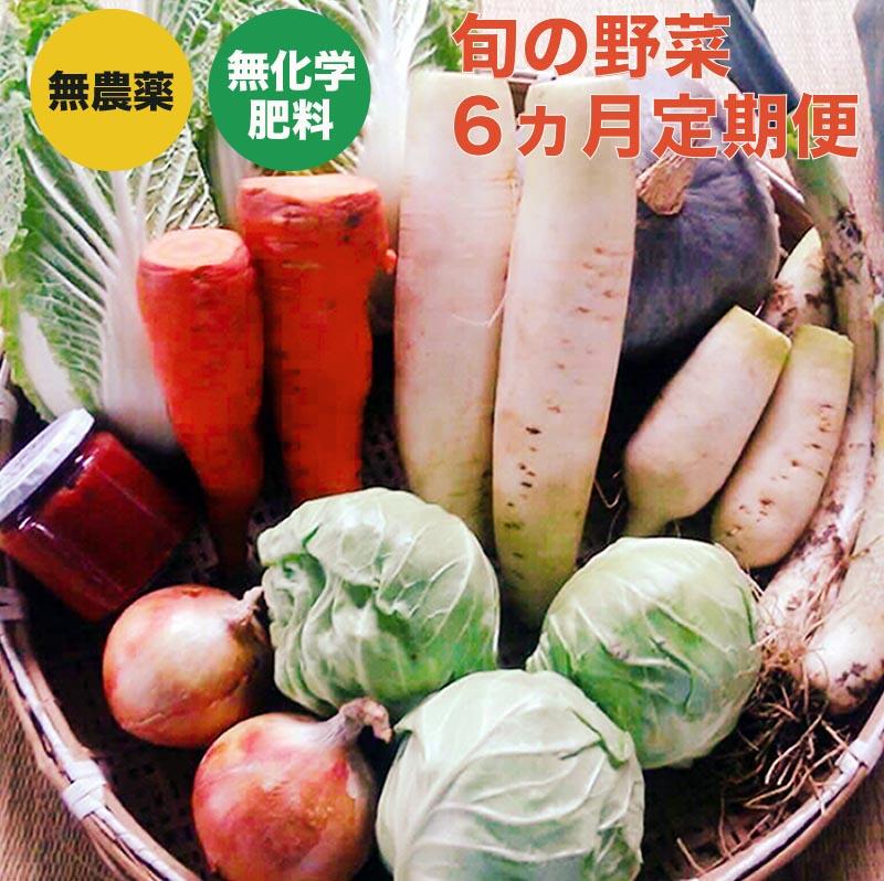 長野県小布施町 【ふるさと納税】新規就農者応援コース 小布施めぐる野菜セット 6ヶ月定期便