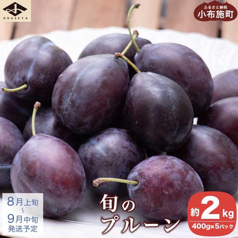 長野県小布施町 【ふるさと納税】旬のプルーン 約2kg