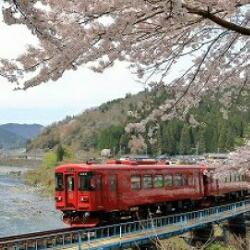 観光列車「ながら」ランチプラン乗船券(おひとり様)