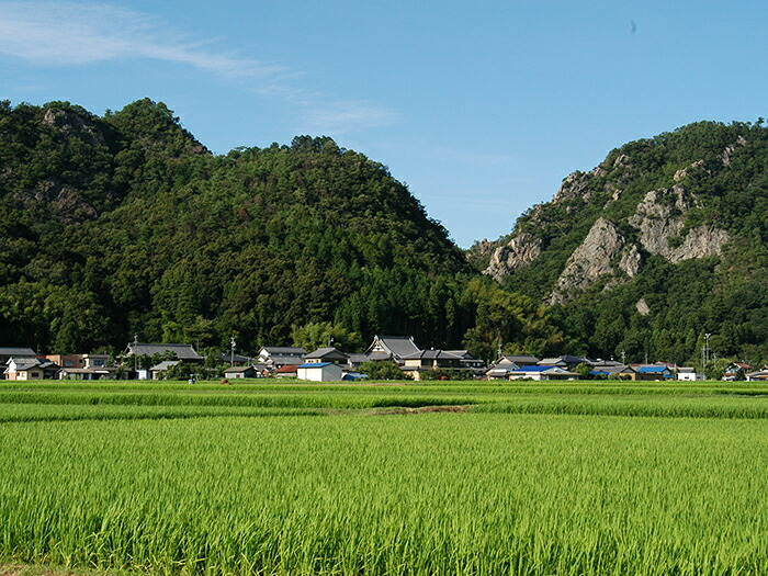 美濃加茂の農村風景
