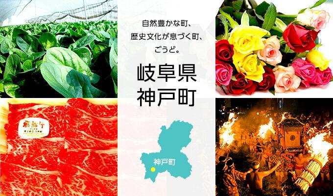 岐阜県神戸町