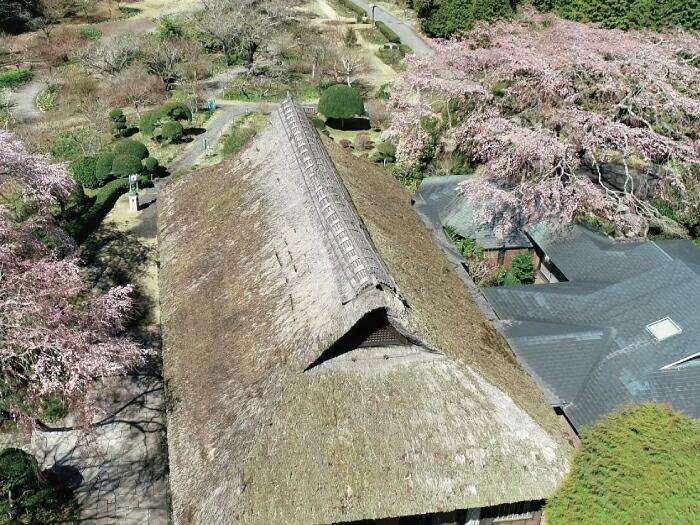 母屋と茅葺屋根の現在