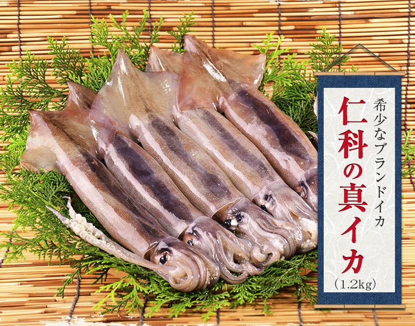 はんばた市場【仁科港産 冷凍スルメイカセット】