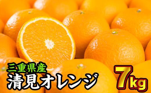 三重県尾鷲市 【ふるさと納税】三重県産 清見オレンジ(きよみ) 7kg