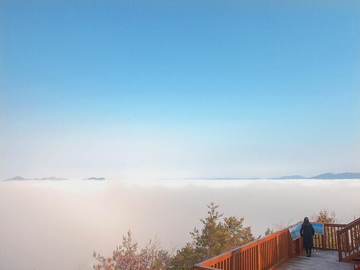 市内の「霧のテラス」から見える風景