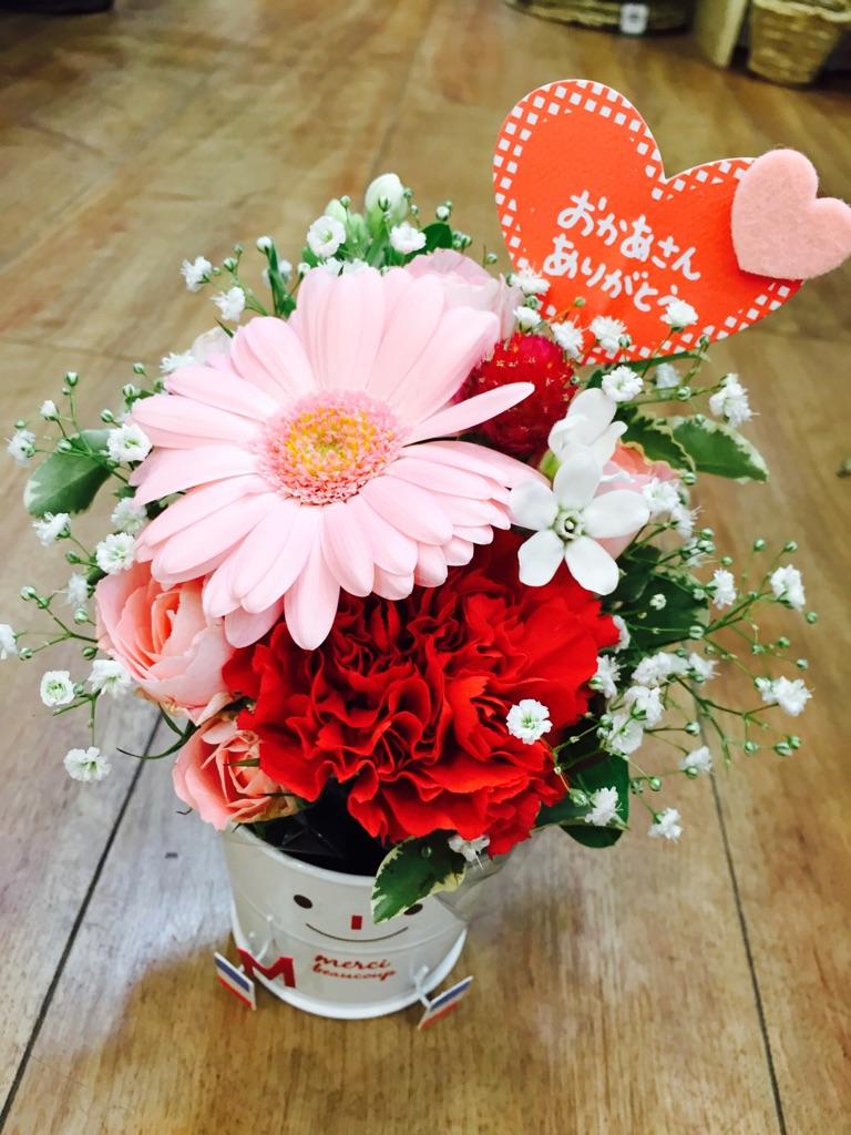 大阪府泉南市 【ふるさと納税】D-169【母の日ギフト】お母さんへのプレゼントに!生花の...