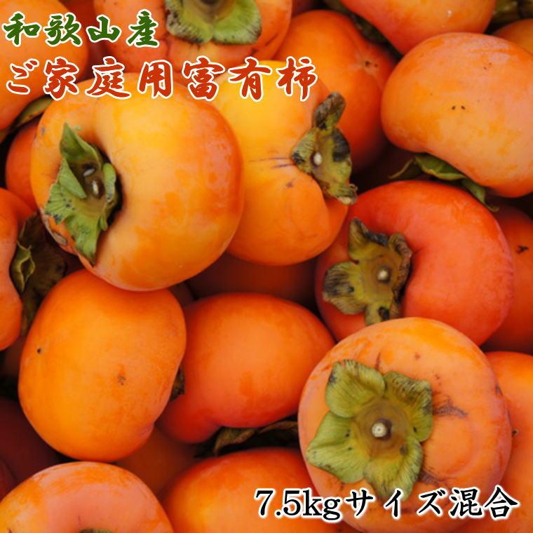 和歌山県湯浅町 【ふるさと納税】和歌山産 富有柿 ご家庭用 約 7.5kg サイズ混合