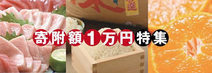 寄附額1万円の返礼品特集