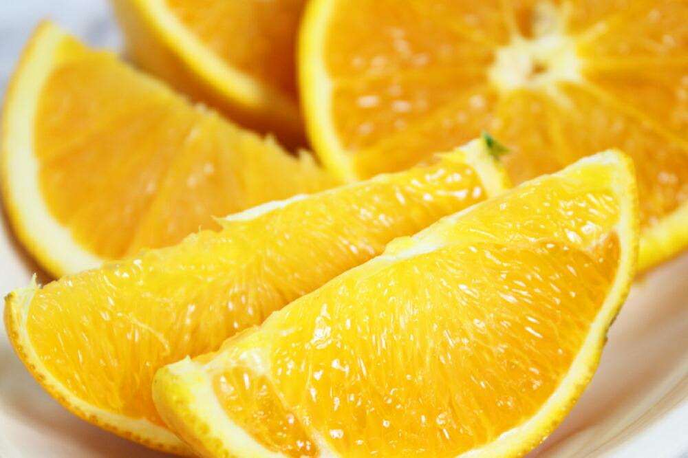 和歌山県串本町 【ふるさと納税】【国産】希少バレンシアオレンジ 5kg